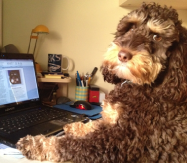 Baxter here....I love to get emails!